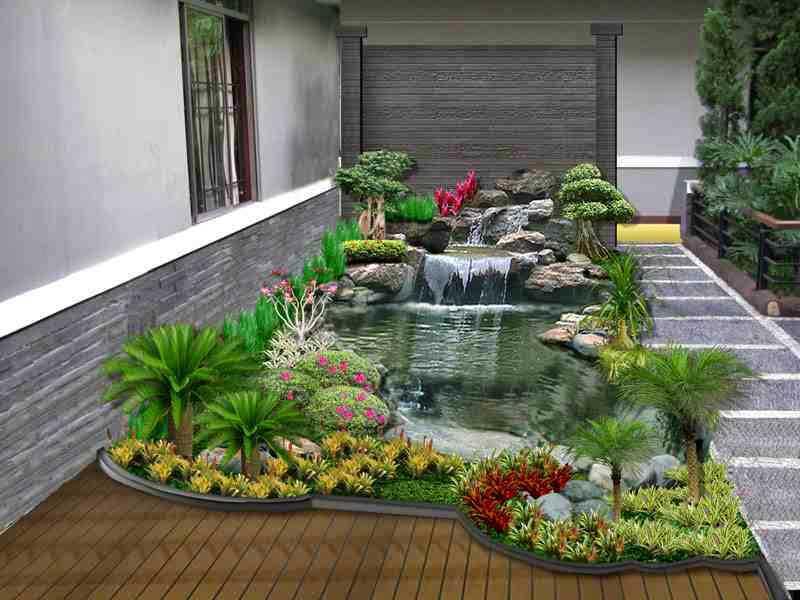 Hasil gambar untuk tanaman air mempercantik kolam