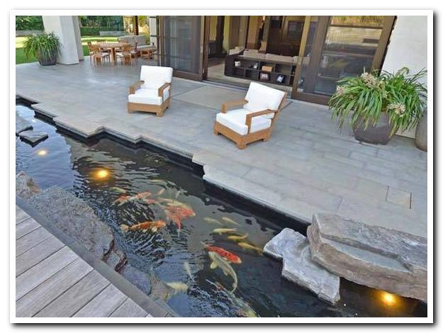 Membangun Kolam Ikan untuk Taman Rumah Anda