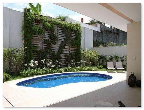 kolam renang kecil belakang rumah