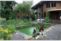 desain kolam renang alami natural