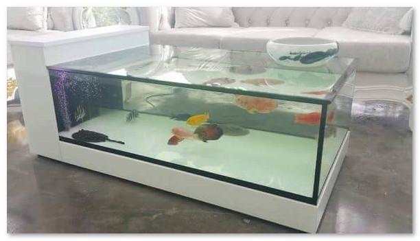 Desain Unik Aquarium Sebagai Meja Tamu - Desain Rumah Unik