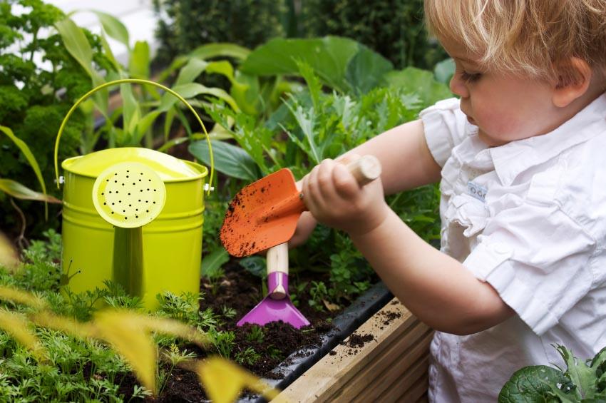 berkebun di taman belakang rumah