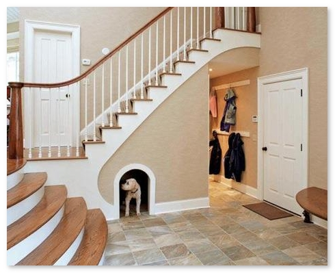 ruang bawah tangga yang keren   sebagai kandang hewan peliharaan