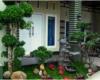 adanya-bonsai-yang-memberi-efek-minimalis-dan-bermanfaat