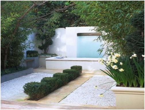 taman kecil belakang rumah yang nyaman dan asri