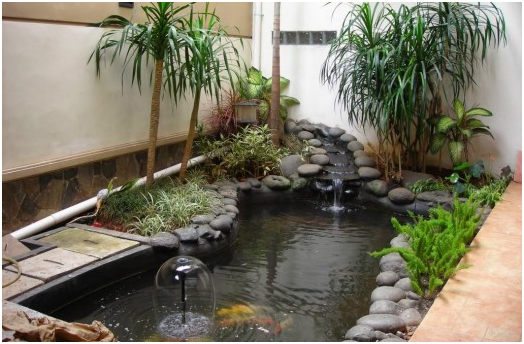 taman rumah dengan kolam ikan yang segar dan sejuk