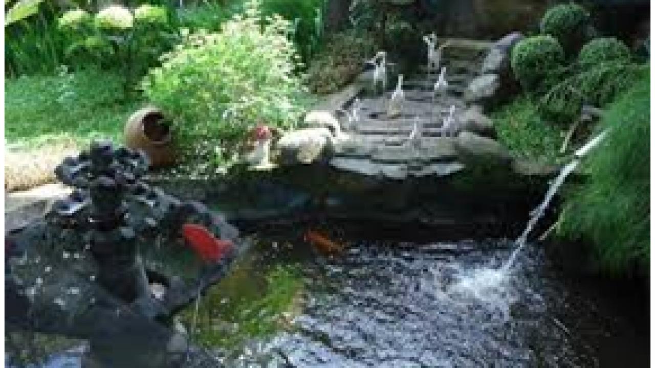 Tips Dan Desain Taman Minimalis Depan Dan Belakang Rumah
