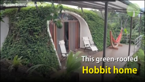 rumah hobbit atap rumput hijau