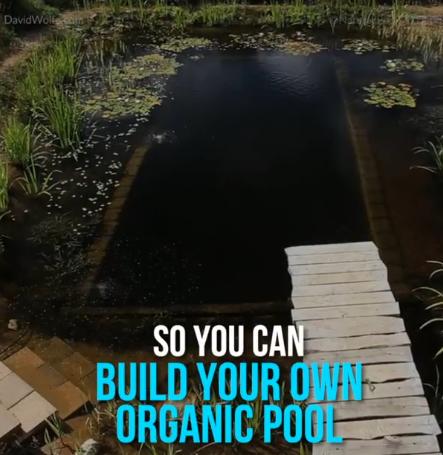 kolam renang yang dapat dibuat sendiri