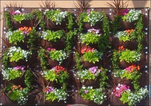 menanam bunga pada lahan vertikal