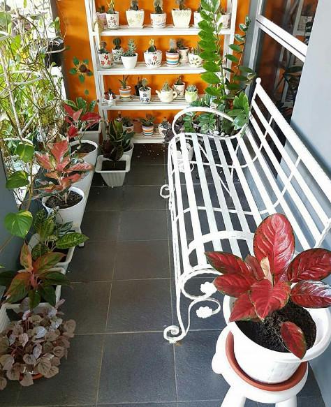 ruang teras rumah minimalis cantik dan sehat