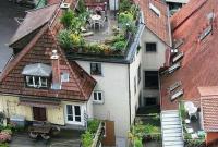 Kebun di Atas Genteng