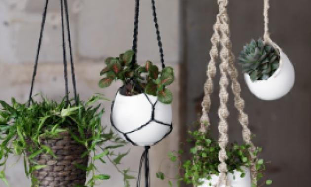 Indahnya Taman Indoor dengan Pot Gantung dari Ranting