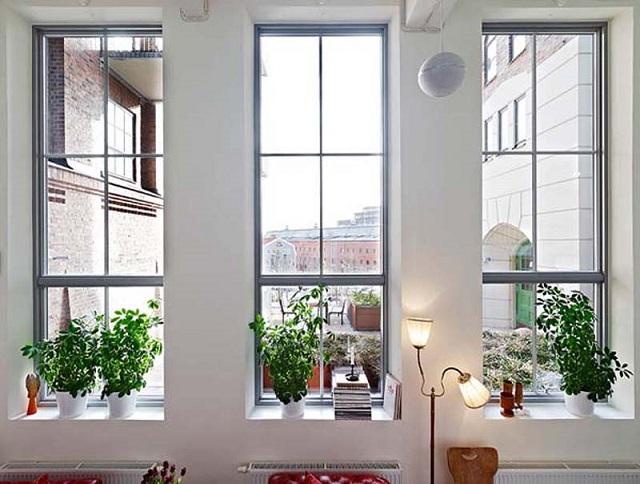 Memaksimalkan Fungsi Jendela Dan Ventilasi Rumah Minimalis4